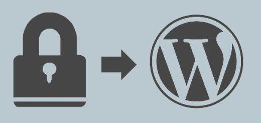 Medidas-de-segurdidad-WordPress